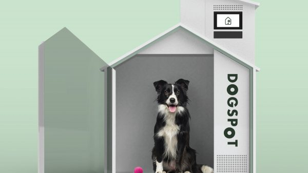 Albertsons has installed hi-tech app-connected dog houses outside its stores where customers can leave their dogs while they shop.
